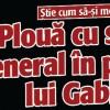 Ploua cu stele de general in partidul lui Gabi Oprea
