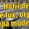 Hotii de masini de lux, organizati dupa modelul SRI!