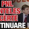 PSD si PNL s-au inteles sa se certe in continuare