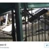 Accident de tren in New Jersey: zeci de raniti (VIDEO)