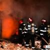 Incendiu la un adapost pentru animale al Circului din Capitala: 11 dintre ele au murit