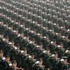 China vrea o armata la valiza