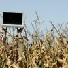 Internetul la sate, ERROR NOT FOUND