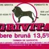 Nepotul lui Mircea Lucescu reinvie berea Grivita!