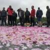 A inceput razboiul trandafirilor in Bulgaria