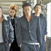 Liderii Yakuza, prinsi la furat pepeni