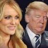 Trump o are mica, in forma de ciuperca