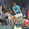 Arestata pentru ca a salvat animale de uragan