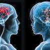 Diferenta intre creierul femeilor si cel al barbatilor
