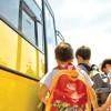 Gabriela Firea vrea microbuze scolare