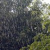 Capitala, sub avertizare de ploi cu frecvente descarcari electrice