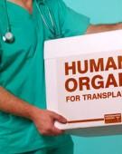 Cine a creat in secret Agentia Nationala de Transplant pentru politicieni si VIP-uri