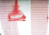 Cutremur in Vrancea, resimtit puternic in Capitala