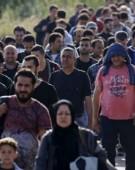 Ni se baga pe gat 20.000 de sirieni din Serbia!