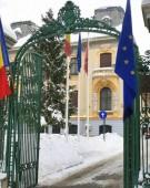 """""""Macel"""" la usa PSD pentru functii in MAI!"""