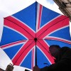 Femeile si copiii vor da cu bomba in Marea Britanie