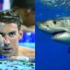 Michael Phelps a pierdut intrecerea cu un rechin!