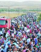 Tsunami-ul de migranti loveste Romania!