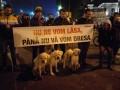 Protest impotriva nimicului