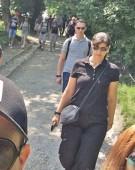Kovesi la Schonbrunn!