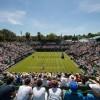 Wimbledon 2018. Djokovic si Anderson lupta pentru trofeu. Finala sta sa inceapa