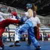 Turcoaicele, inebunite dupa kick-boxing
