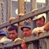 30 de milioane de sclavi in lume