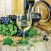 UE ne critica dar ne bea vinul