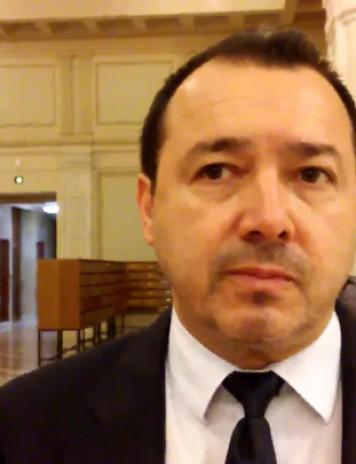"""Deputatul Rădulescă invocă o posibilă excludere a """"colegei"""" Birchall din PSD"""