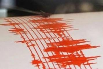 Cutremur de 3,8 in zona Vrancea