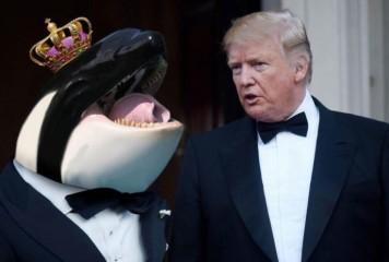 """Trump crede că l-a întâlnit pe """"Prințul Balenelor"""". S-a văzut, de fapt, cu Prințul de Wales"""