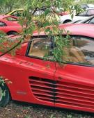 Cimitirul Ferrari