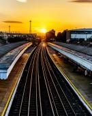 S-a lansat programul estival Trenurile Soarelui
