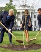 S-a uscat pomul Trump-Macron