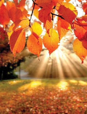 Octombrie, cea mai secetoasă lună a anului