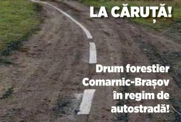 PSD, ironii la adresa lui Bode: A găsit marea soluție – un drum forestier! Wow!