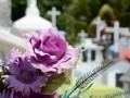 Apeleaza la o firma de servicii funerare din sectorul 1 si treci mai usor peste momentele dificile