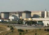 Directorul Nuclearelectrica si-a tras bonus 216 salarii!