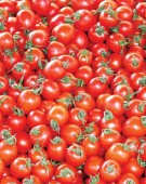 Supraproductie de rosii romanesti. Importurile, suspendate