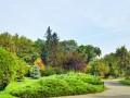 Grădina Botanică, opera de artă a naturii