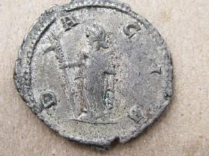 dacia draco copy 300x225 Epopeea steagului dacic de lupta    Partea I
