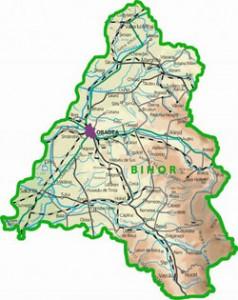 rezultate bac 2011 bihor 238x300 BAC 2011 BIHOR: Rezultate la Bacalaureat 2011 pentru judetul Bihor