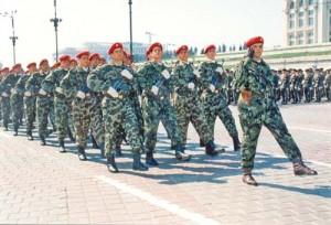 Untitled 1 copy1 300x204 Oprea pregateste invadarea Armatei cu civili
