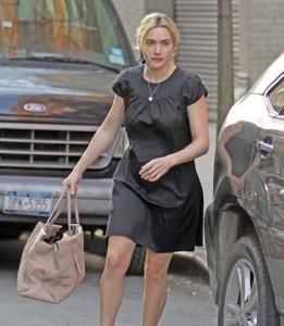 insula branson hepta copy1 261x300 Kate Winslet, eroina miliardarului Branson