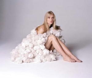 vedete gwyneth copy 300x254 Cum de raman starurile mereu tinere si frumoase