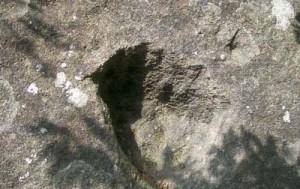 4 palma urias 300x189 Cetateni, loc de inscaunare a domnitorilor Castei IO