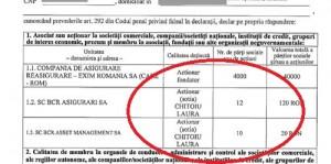 """chitoiu2221 300x149 Nevasta ministrului Chitoiu, in """"Caracatita asigurarilor"""""""