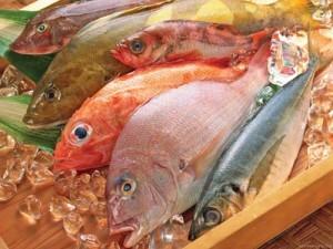 peste la gheata 300x225 Fructe de mare cu salmonella si substante cancerigene