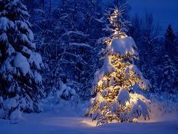 craciun1 Prognoza de sarbatori: Va ninge de Craciun si de Revelion