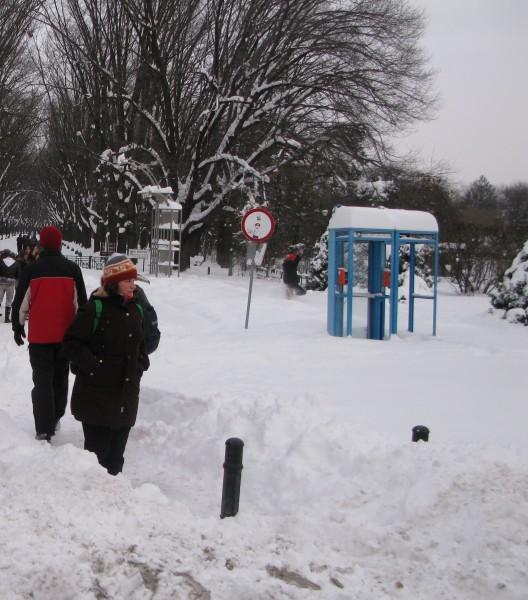 frig ger iarna 528x600 CAPITALA si mare parte din tara, sub COD PORTOCALIU de GER